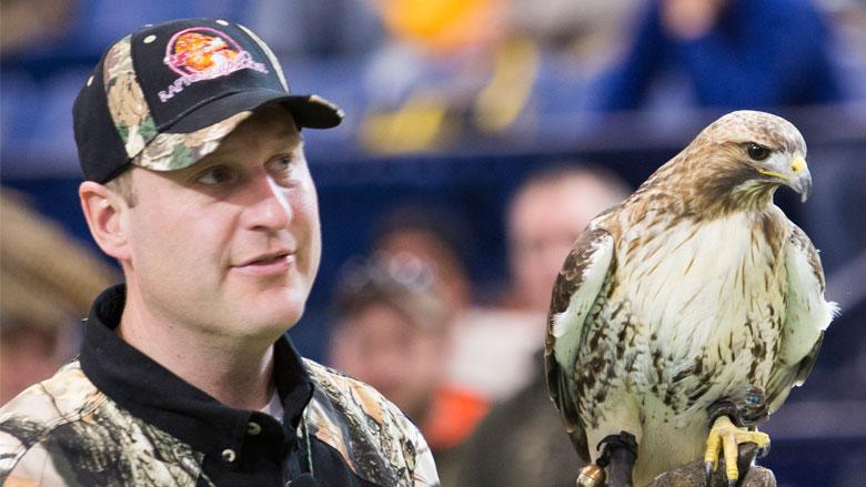Raptors Up Close: Birds of Prey - The Ultimate Hunters